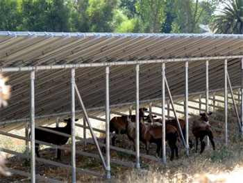 Almost 60,000 US Farms Have On-Site Renewable Energy